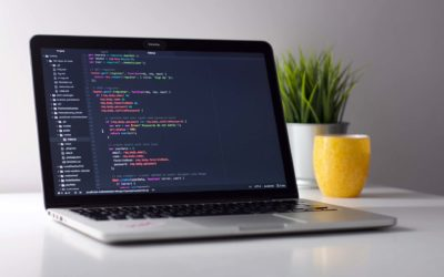Can Small Businesses Afford Custom Software?